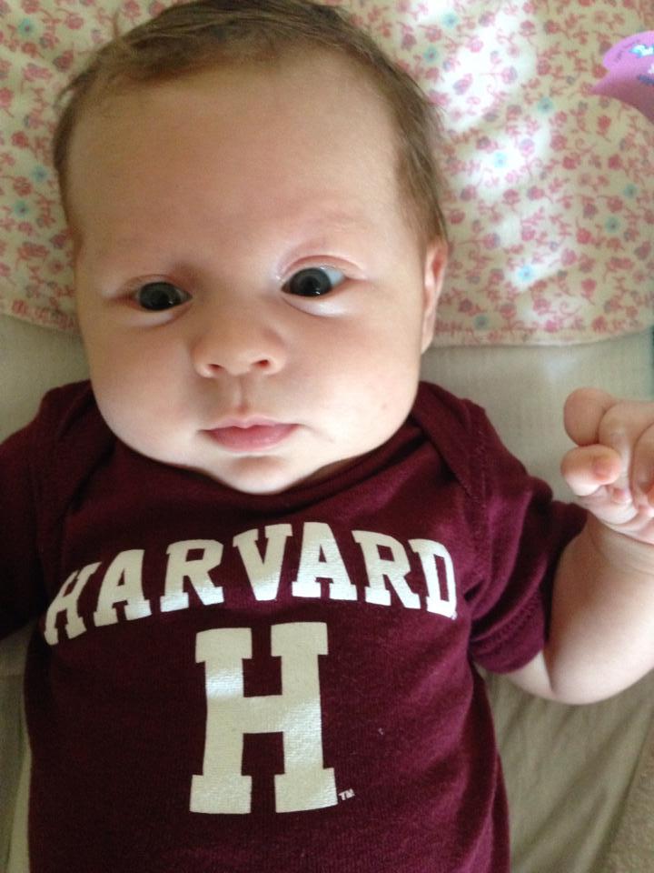 Harvard Baby