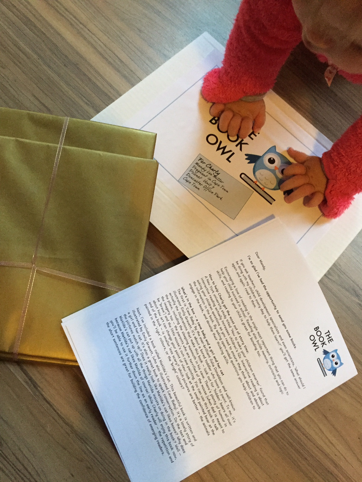 The Book Owl Review {Giveaway Closed} ~ Pregnant in Cape