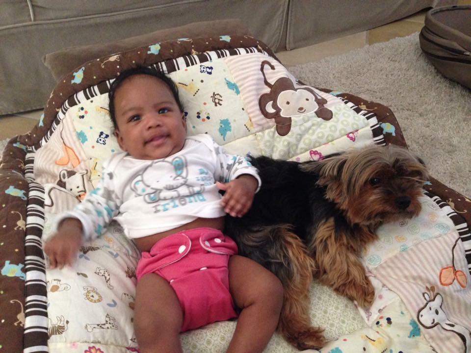 H&puppy